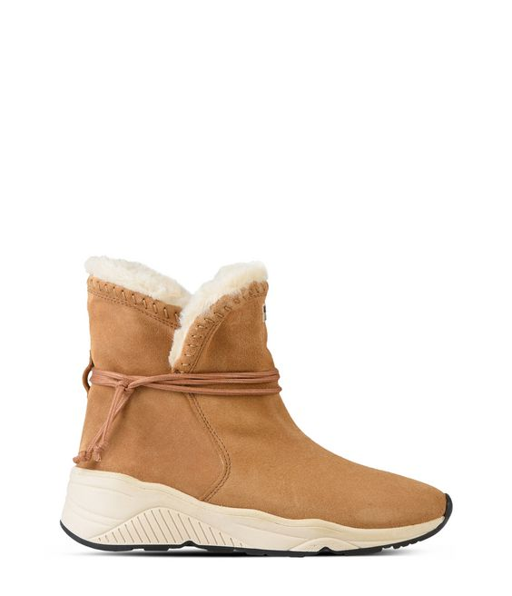 NAPAPIJRI DORIS Ankle boots Woman f