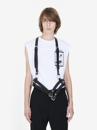 Harness Two