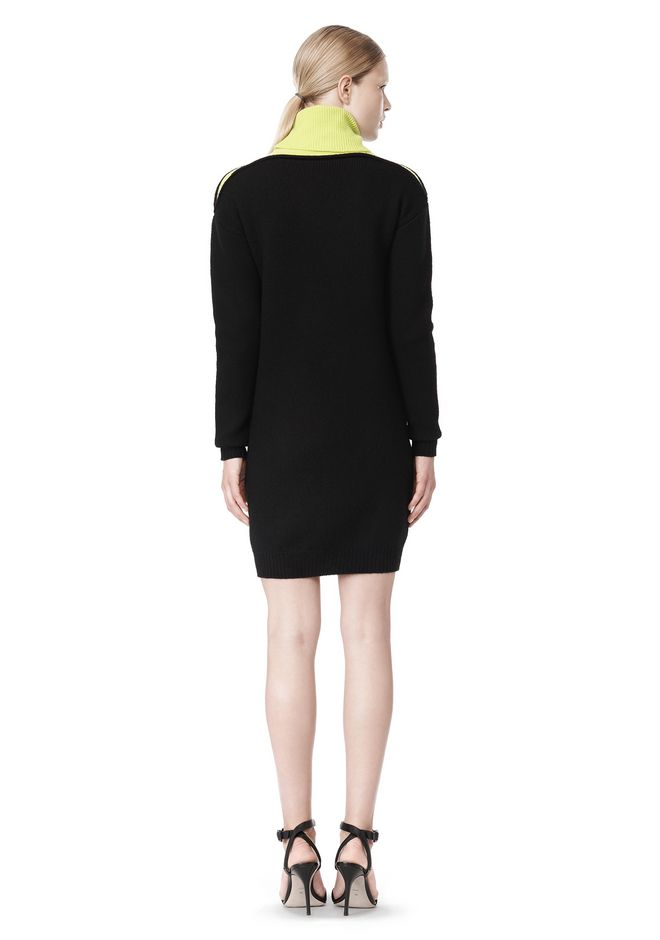 ALEXANDER WANG SPLITTABLE TURTLENECK DRESS KNIT DRESS Adult 12_n_r
