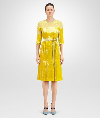 DRESS IN CITRINE VELVET, DEVORE' DETAILS