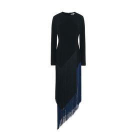 STELLA McCARTNEY Maxi D Camille Black Fringe Dress f