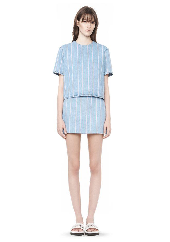 Striped Denim Skirt