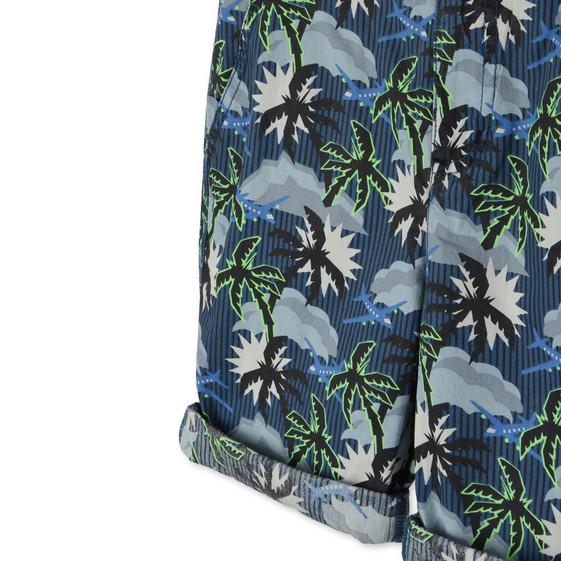 Blue Hawaiian Print Lucas Shorts