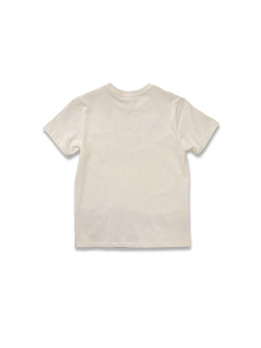 DIESEL TARMY T-Shirt U r