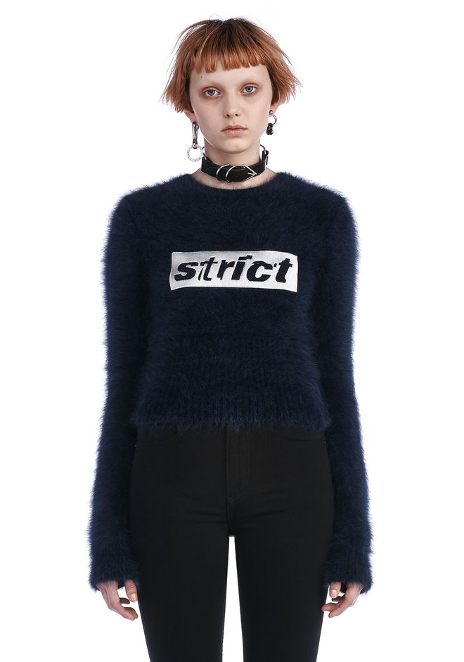 ALEXANDER WANG TOPS Women SHRUNKEN PULLOVER WITH STRICT EMBROIDERY
