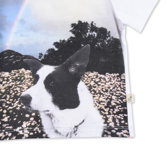Meat Free Monday Dog Print Chuckle T-shirt
