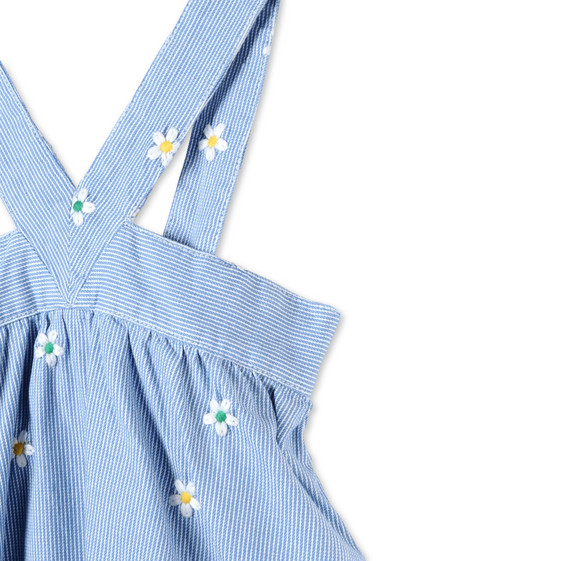 Striped Daisy Crocus Dress