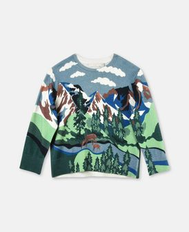 Cassius Blue Mountain Print Knit Sweater