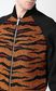 JUST CAVALLI Animal-print bomber jacket Jacket Man e