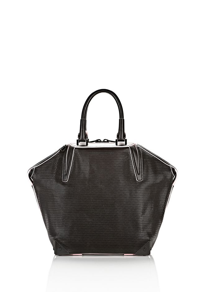 ALEXANDER WANG EMILE TOTE IN BLACK WITH MATTE BLACK TOTE/DEL Adult 12_n_a
