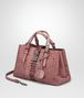 BOTTEGA VENETA SMALL ROMA BAG IN DUSTY ROSE EMBROIDERED NAPPA LEATHER, AYERS DETAILS Top Handle Bag D rp