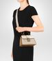 BOTTEGA VENETA MINK NAPPA MINI PIAZZA BAG Top Handle Bag Woman lp