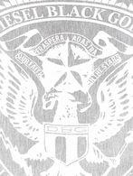 DIESEL BLACK GOLD SCAR-CRESTINSINIA Scarf & Tie U e