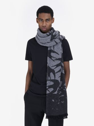 Swallow Dégradé Scarf
