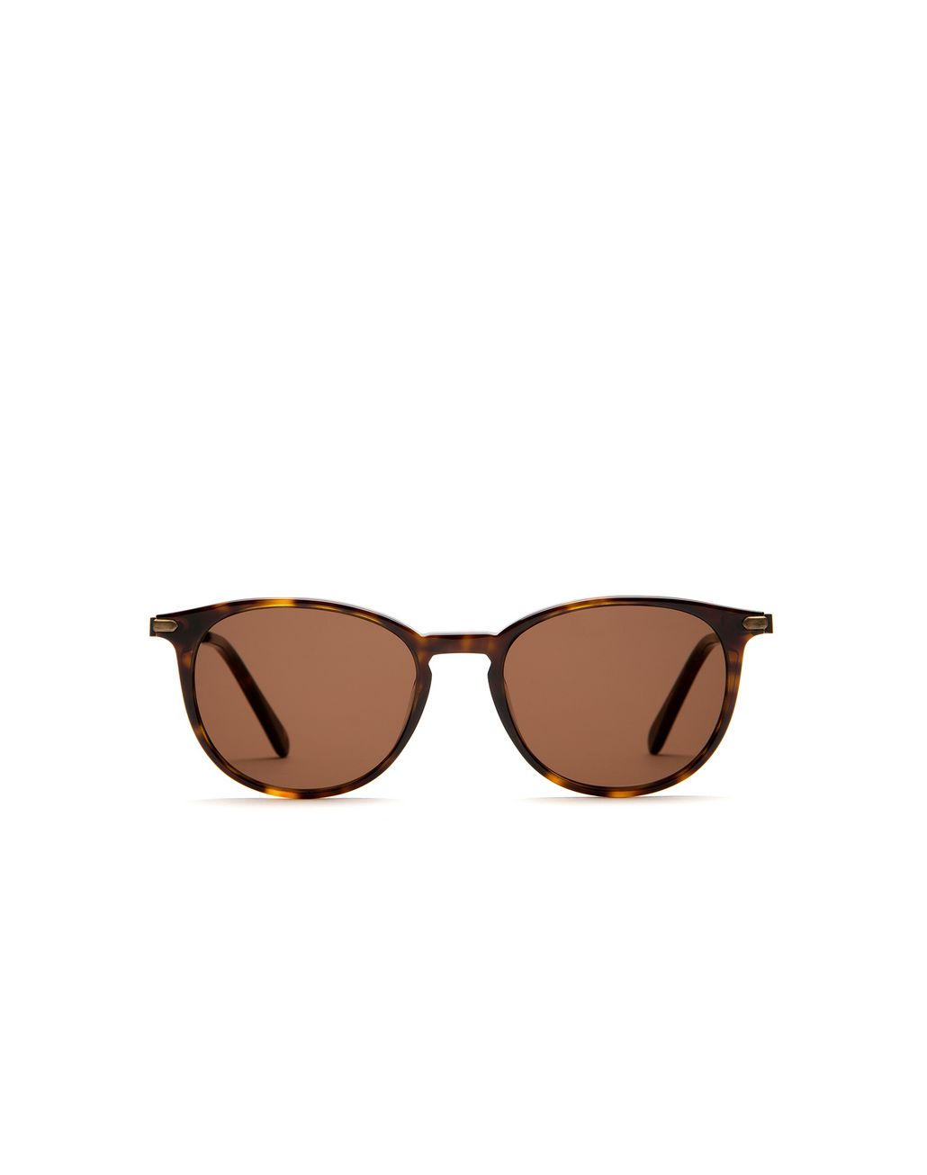 BRIONI Shiny Dark Havana Retro Pantos Sunglasses Sunglasses [*** pickupInStoreShippingNotGuaranteed_info ***] f