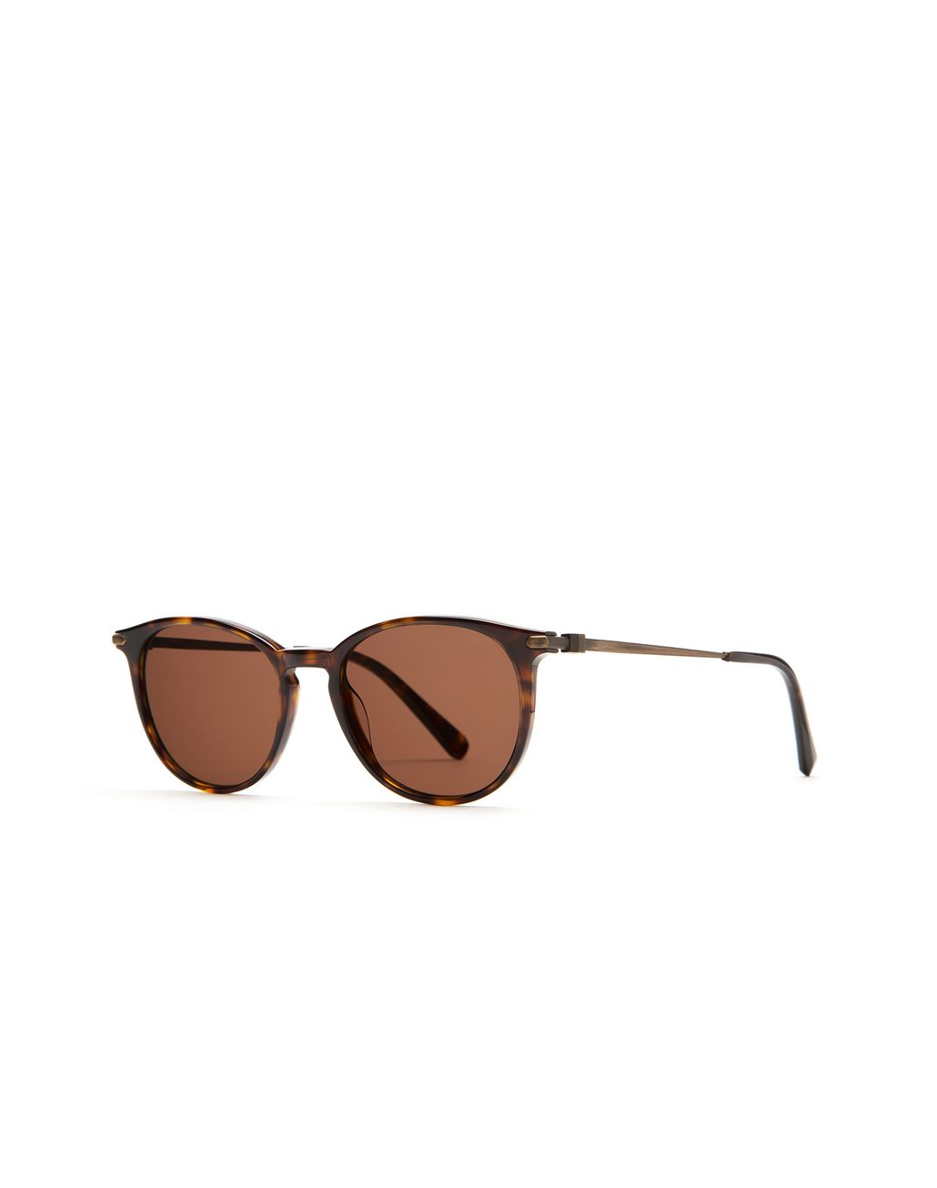 BRIONI Shiny Dark Havana Retro Pantos Sunglasses Sunglasses [*** pickupInStoreShippingNotGuaranteed_info ***] r