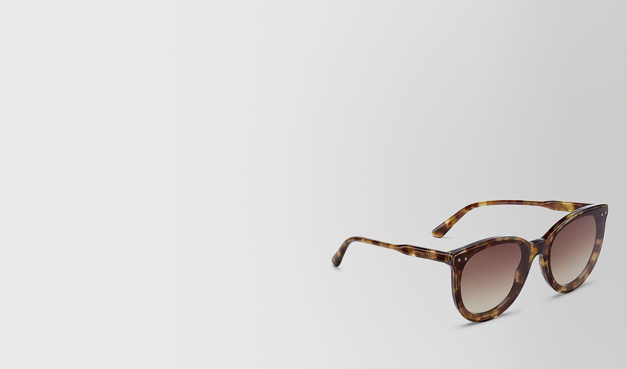 avana brown acetate sunglasses landing