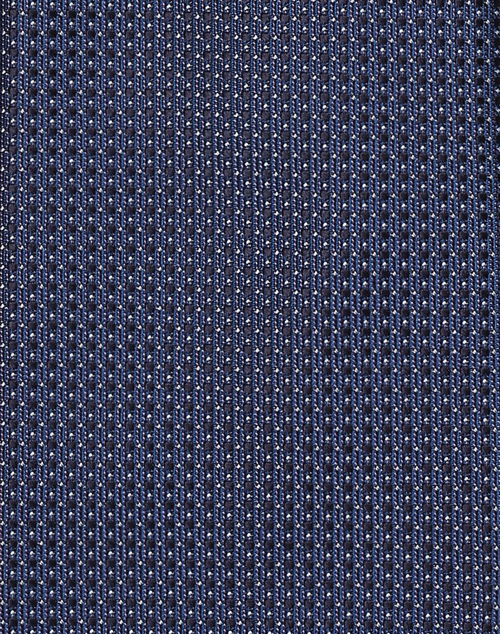 BRIONI Navy-Blue and White Dotted Tie Tie Man d