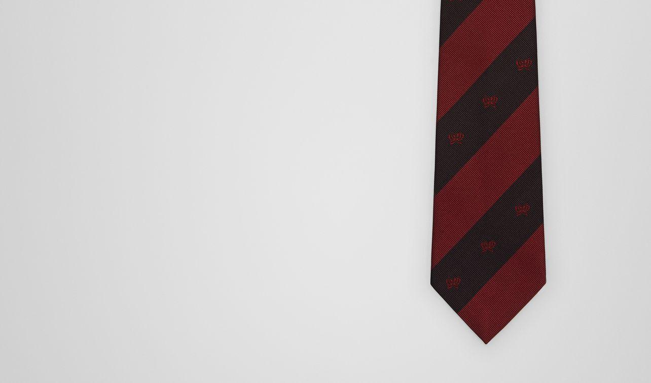 tie in silk  landing