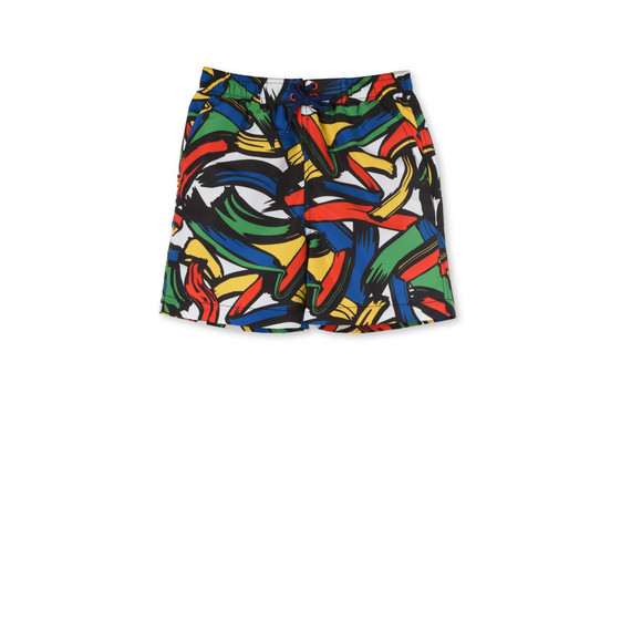 Paint Strokes Taylor Swim Shorts