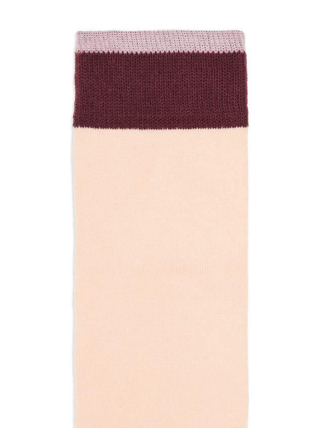 Marni Socks in cotton Woman - 3