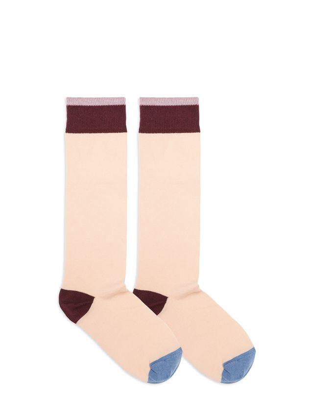 Marni Socks in cotton Woman - 2
