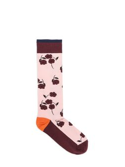 Marni Socks in cotton Woman