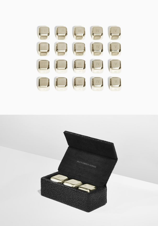 ALEXANDER WANG DICE SET WITH BOX DOMINO SET Adult 12_n_e
