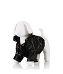 KARL LAGERFELD Dog Jacket S40 8_f