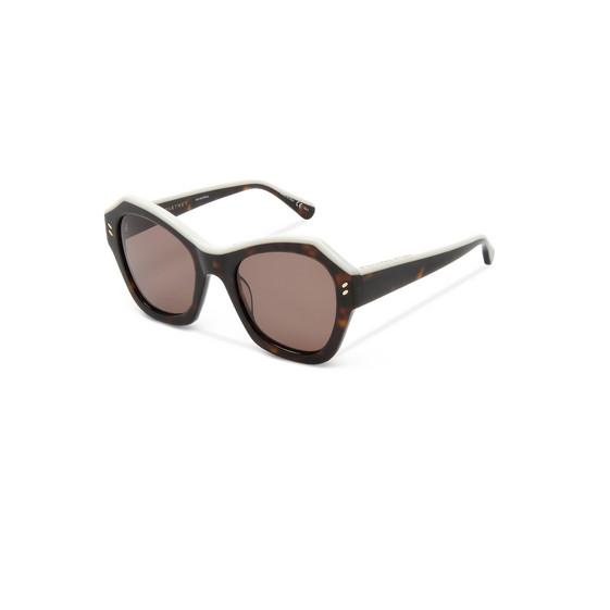 Classic Havana Oversized Sunglasses